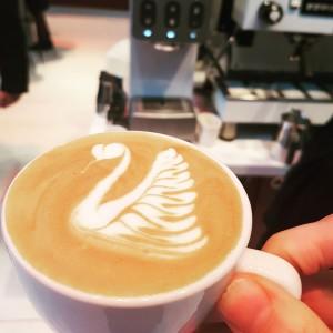 Latte Art Lattis Horecava