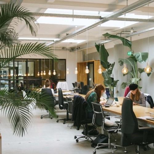 5 tips voor een gezonde werkplek